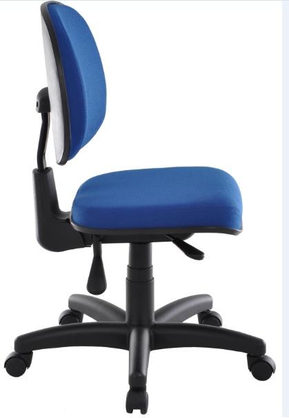 Cadeira Executiva Anatomica com Back System